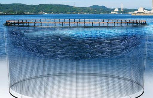 گسترش فناوری دریایی شریف